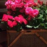 Flores no lounge