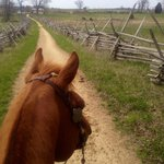 Battlefield by horseback
