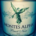 Excelente el vino del patrón que me recomendó don Javier