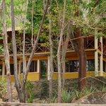 Φωτογραφία: Apoyo Resort