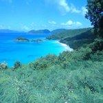 Trunk Bay Virgin Islands Nationalpark St. Thomas , USVI