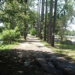 Atv and golfcart trails