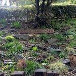 Garden in parking area