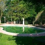 piscine non entretenue