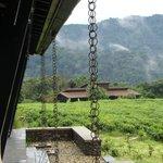 blik vanaf terras naar cabins