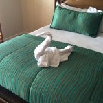 Swan on our bed