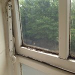 Filthy and mouldy ill fitting window, note the toilet paper filler left by a previous guest to b