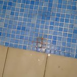 Dirty and missing floor tiles in the pool area