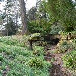Wandering through the arboretum