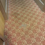 Stained and Worn carpet on second floor hallway