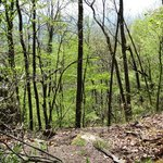 View off the Ridge Trail