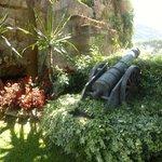 Gardens in Hotel