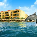 Foto de The Royal Sea Aquarium Resort