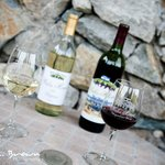 First Commercial Winery in Collin County