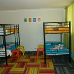 superior family room bunk beds