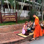 good activity you should do in the early morning while staying in Luang Prabang and here is the