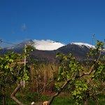 Foto de La Cirasella dell'Etna