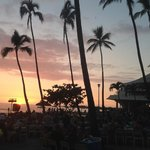 from the Luau