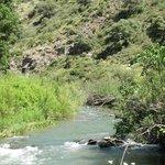 Vistas del rio Guadiaro