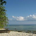 部屋を海側に出るとプライベートビーチがあります。