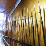 Museo Siamese