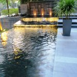 Gardens with water feature