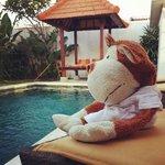 Morning view at pool