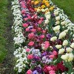 Весна -апрель