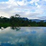 Swim with Sideman nature view