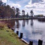 zona de baño pesca y remo