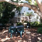 Back garden - lovely seating area under a beautiful tree