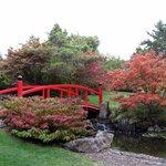 Japanese Gardens at Hobart RBG