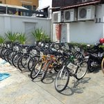 free bicycles for rent