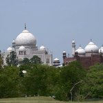 Taj seen from Lush green surroundings