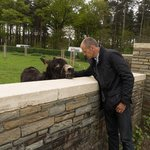 Phil & his friend, the donkey