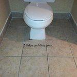Toilet/ Bathroom