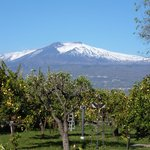 View of Mount Etna from the terrace