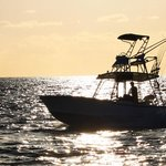 Check out the beautiful views while catching fish on one of our fishing charters!