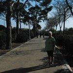 Calvia Promenade