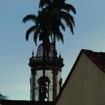 Palmeira real e campanário