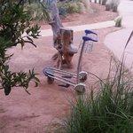 Le chariot à Bagages de l'hôtel 5 étoiles!!!