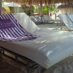 canapy beds on private beach area