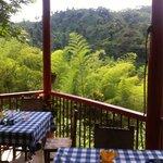 Vista desde la hacienda mientras almuerzas