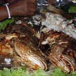 Seafood buffet (Kob fish)