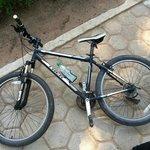 Trek bikes, always available.