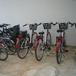Hotels bikes for rent