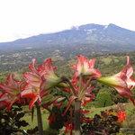 Vista del Volcán Barú