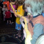 This was the grand finale of the Live Reptile show. My son was the snakes anchor.