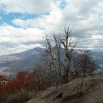 Vista desde Cerro Tronador