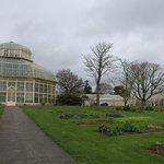 large glass greenhouses